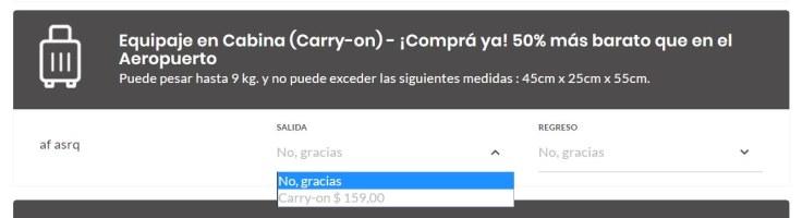 Equipaje Mendoza carry on
