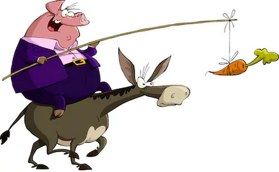 burro siguiendo zanahoria 2